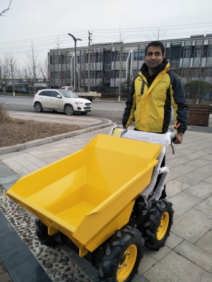 QTP300N 4X4 wheel mini dumper CE 300kg Gasoline Engine